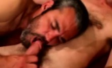 A hairy gay bear gets his erected penis rubbed by a man